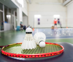Sober Sports Indoor Sports Badminton